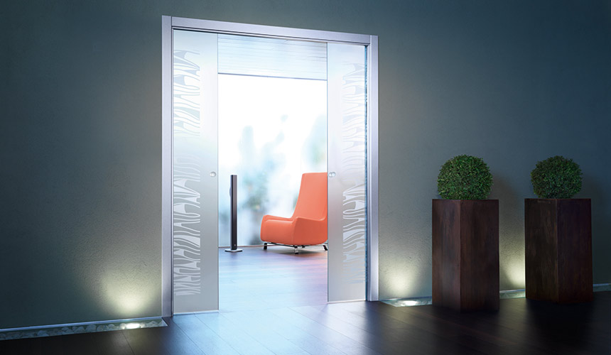 10mm Double Glass Door
